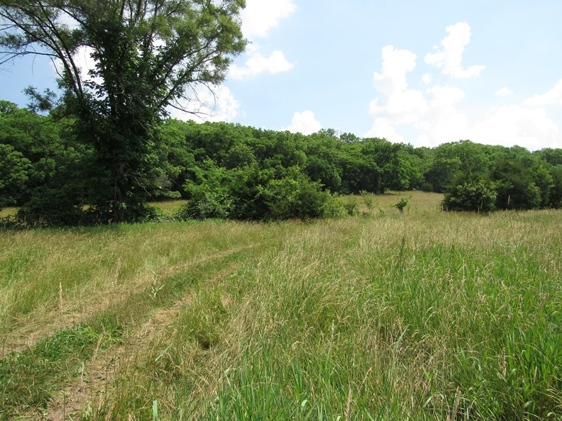 grazing reserve2