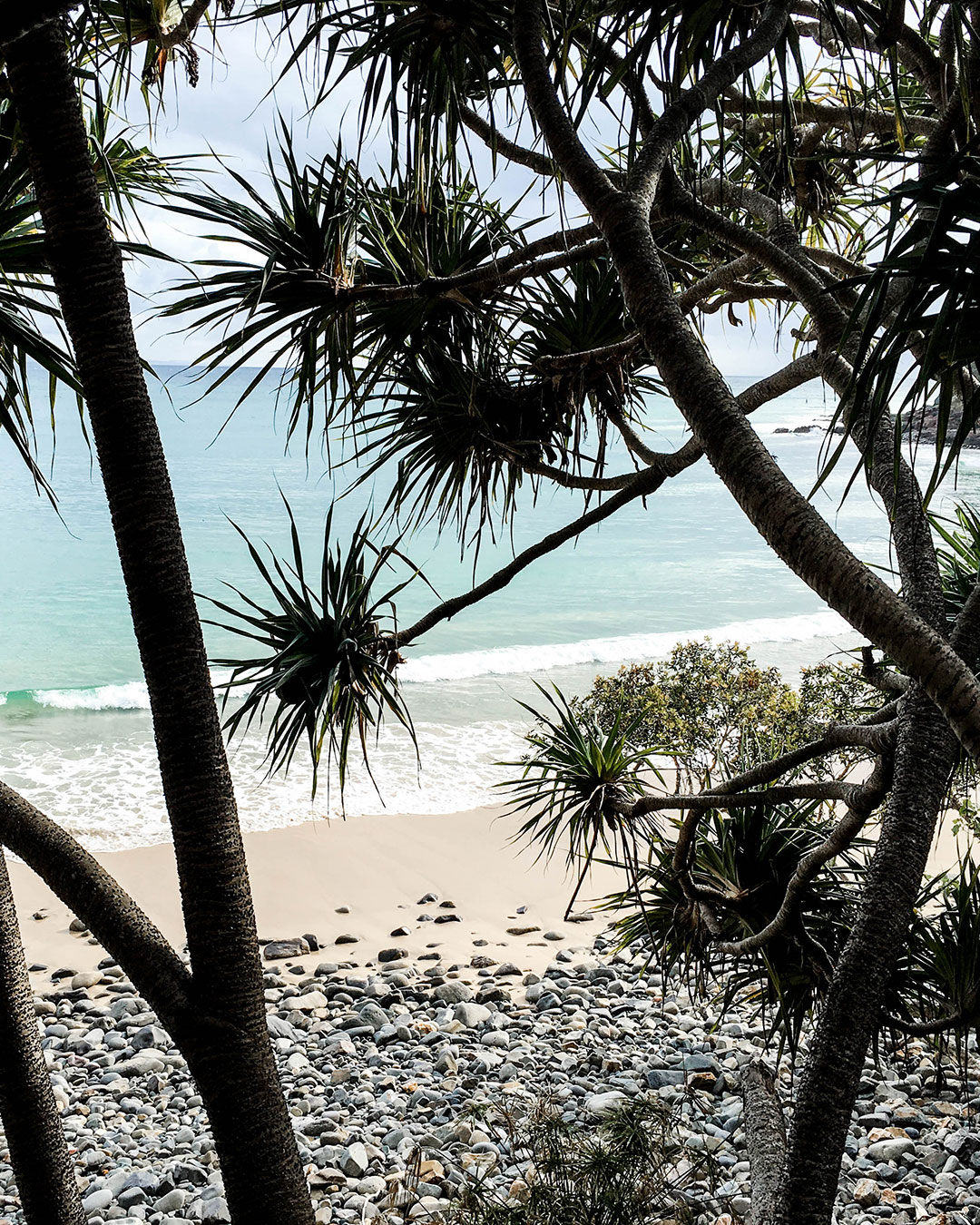 Noosa Coastal Walk View