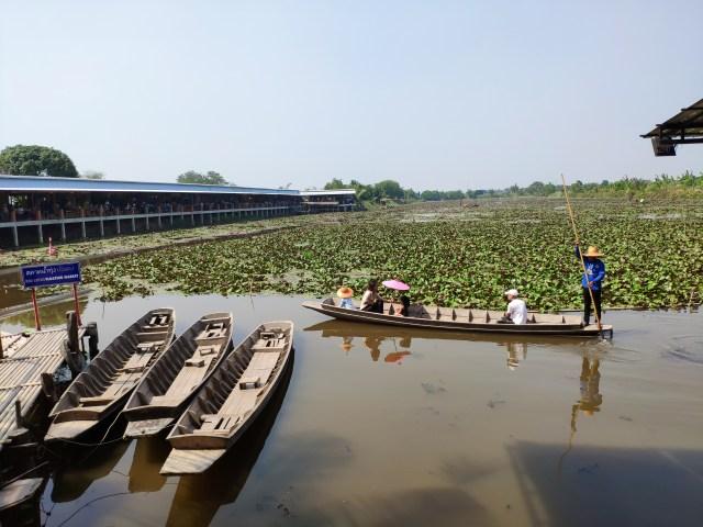 ล่องเรือชมบัวแดง ถ่ายรูปด้วยโดรน ที่ตลาดน้ำทุ่งบัวแดง 3