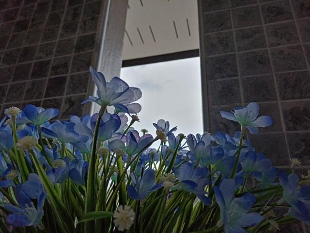 ดอกไม้พลาสติกสีขาวเลื่อมน้ำเงิน มีแบ็กกราวด์เป็นช่องหน้าต่างและกำแพงกระเบื้องลายสีขาวเทา