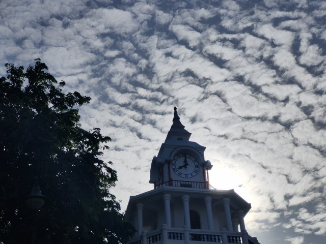 ภาพของหอนาฬิกา และท้องฟ้า มียอดต้นไม้อยู่ด้านข้าง