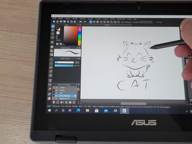 ภาพตัวอย่างการใช้ปากกาสไตลัสของโน้ตบุ๊ก ASUS BR1100FK ในการวาดรูปแมว