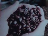 byzantine coffee