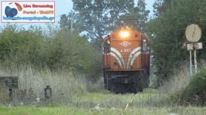 treno-megalopoli (6)
