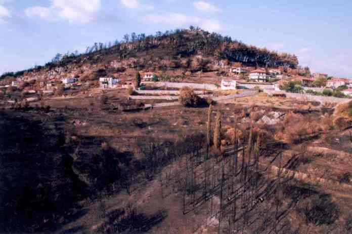 leontari-fotia2007