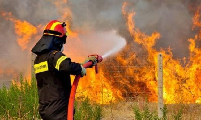 Φωτιά στην Μεσσηνία ανάμεσα σε Διαβολίτσι και Δεσύλλα (video)