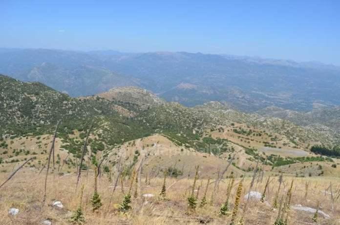 Συνέχιση των ανασκαφών στο Λύκαιο Όρος μέχρι το 2022