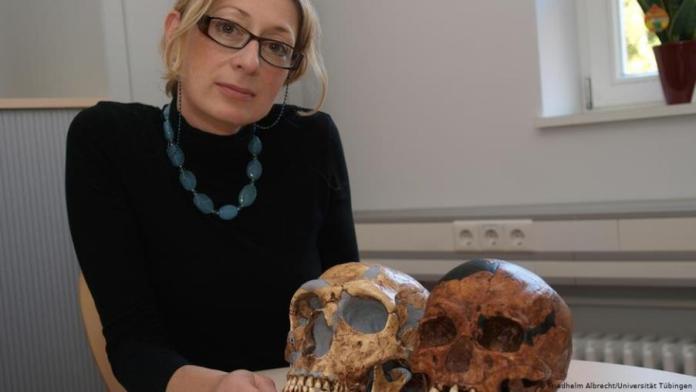 Στην Κ. Χαρβάτη το κορυφαίο γερμανικό βραβείο έρευνας