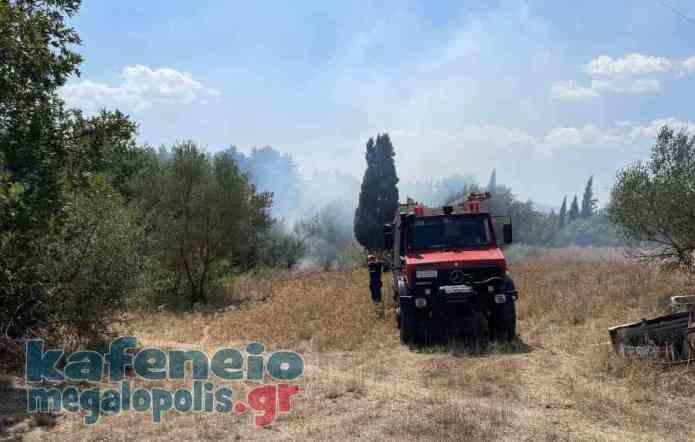 Άμεση κατάσβεση φωτιάς στην Μεγαλόπολη (video-photo)