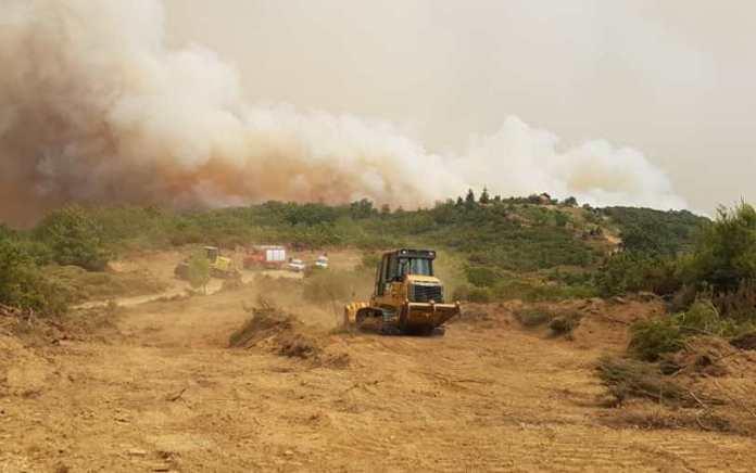 Δήμος Μεγαλόπολης: Το χρονικό της πυρκαγιάς από την αρχή έως σήμερα