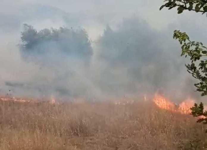 Φωτιά στην Καμάρα αντιμετωπίστηκε γρήγορα πριν δημιουργήσει προβλήματα