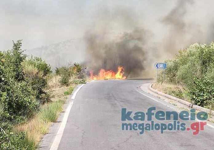 Φωτιά στα Καλύβια Λεονταρίου (video)