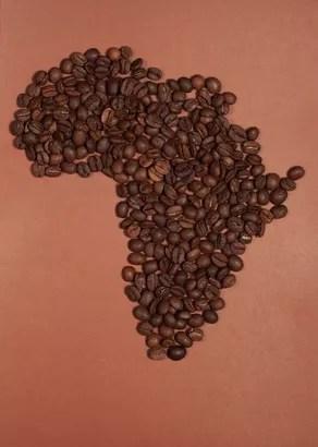 Kaffeeanbau in Afrika
