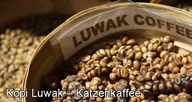 Kopi Luwak Katzen Kaffee