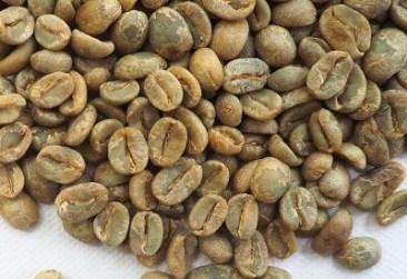 Grüne Kaffee - Schön durch Kaffeegenuss
