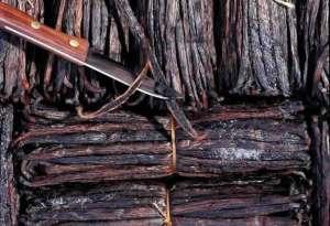 Vanilla bean pods. Source: amadeusvanillabeans.com