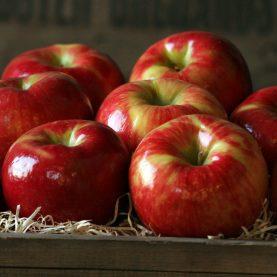 Tart Honeycrisp apples. Source: thefruitcompany.com