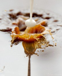 Photo: Alex Hessler for Dreamstime.com