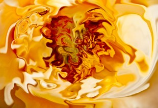 """Bruno Paolo Benedetti Artwork, """"Orange Shades,"""" at absolutearts.com (Direct website link embedded within.)"""