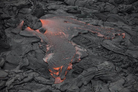 Photo: Bruce Omori/EPA. Source: time.com