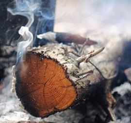 Cade wood. Source: hermitageoils.com