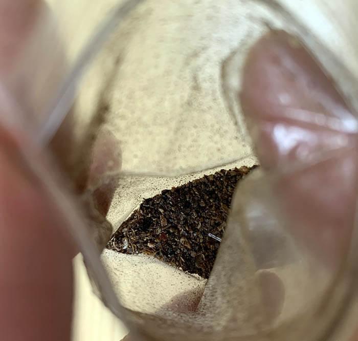 シーサンパンナ(西双版納)の山椒
