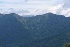 堂岩山から白砂山への稜線から、 佐武流山の稜線越しに遠く、平たい苗場山