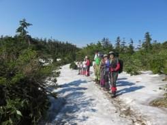 今年は雪渓も多く涼風が心地良いです