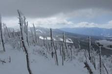 八ヶ岳と南アルプス