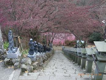 沢山の仏像が並ぶ階段