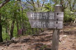 takayama10