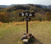 takasuzu09