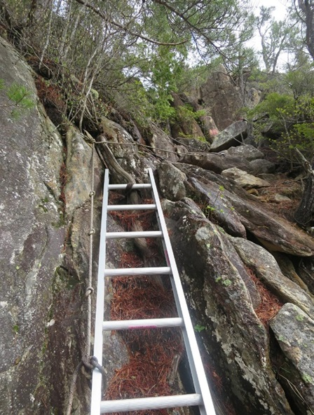 小川山への登り。標高1900m前後は梯子が連続します