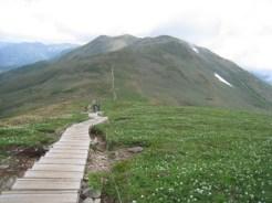 平標山から仙ノ倉山への整備された登山路