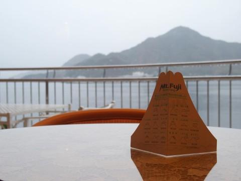 富士山ビュー、のはず