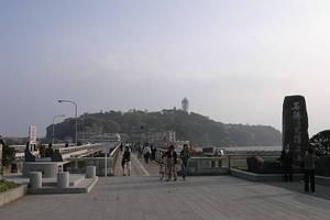 鎌倉・江ノ島のネコ 後編