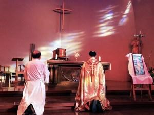聖体の顕示と礼拝 @ 鹿児島カテドラル・ザビエル教会 | 鹿児島市 | 鹿児島県 | 日本