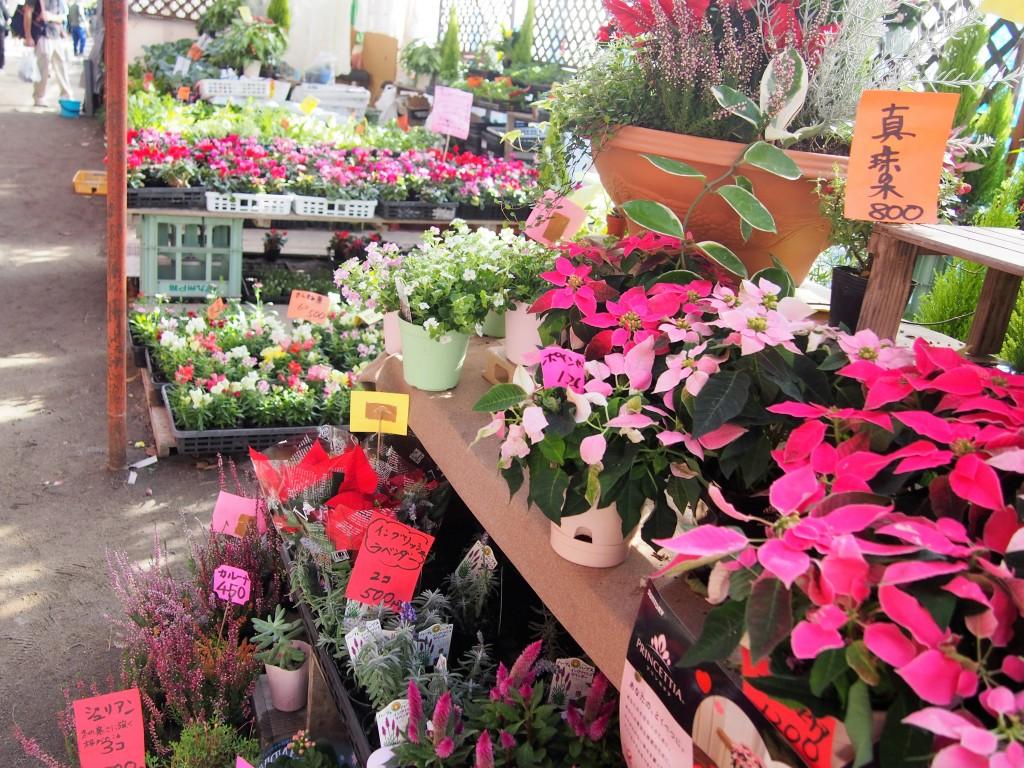 木市の花屋