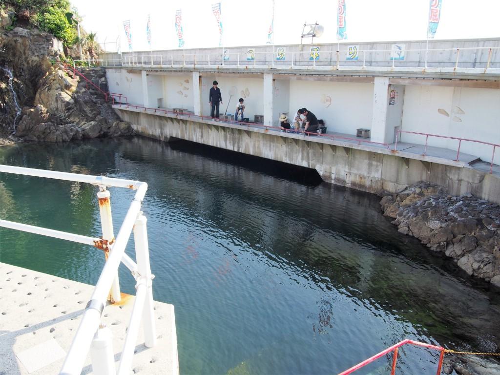志布志大黒イルカランドの釣り堀