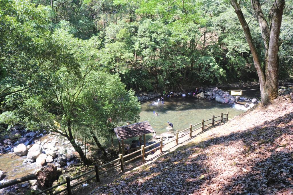 県民の森「水辺の森」