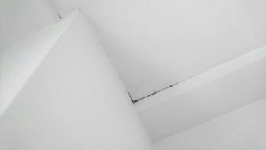 天井にカビが!原因を知り適切な掃除方法で除去しよう!