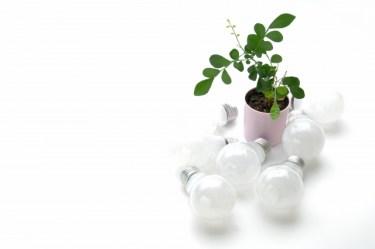 屋外で使用する間接照明の選び方!LEDの人気商品もご紹介