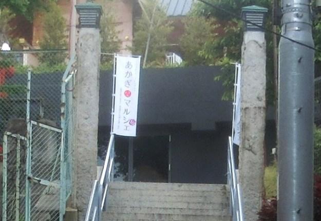 赤城坂の石畳2