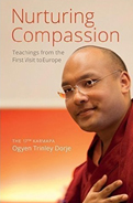 Nurturing Compassion
