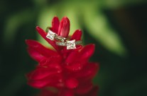 Wedding Rings and Flowers go so well together!