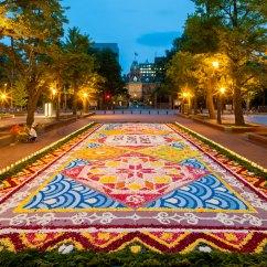 Desk Chair Mat For Carpet Younger Swivel Brussels Flower Festival 2016 - Vidalondon