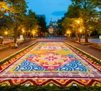 Brussels Flower Carpet Festival 2016 - Carpet Vidalondon