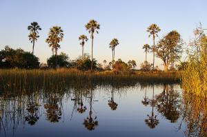 vortrag-namibia-botswana-6