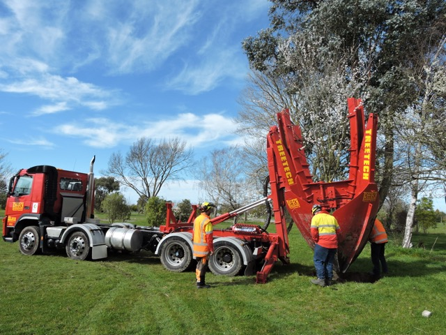 Treetech moving fruit trees
