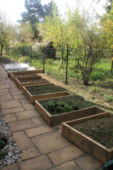 Permaculture kitchen garden completed